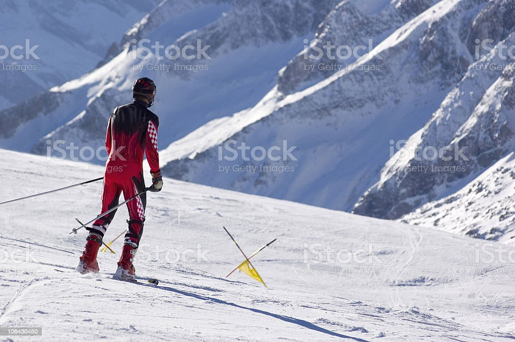 Pro skier. stock photo