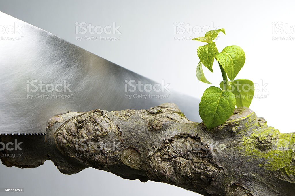 Problem with Downsizing and Cutbacks royalty-free stock photo