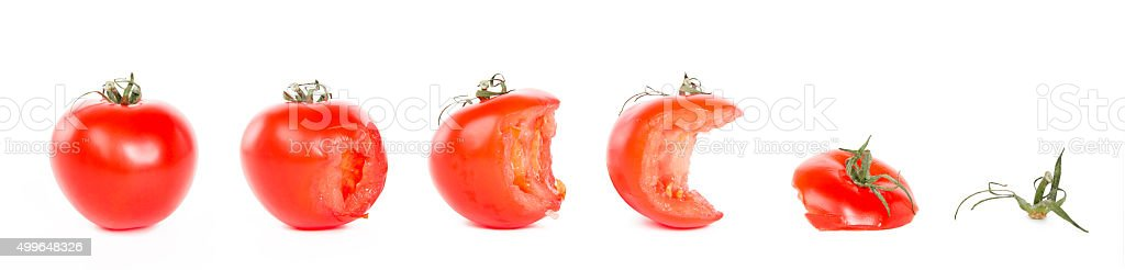 process of eating tomatoes stock photo