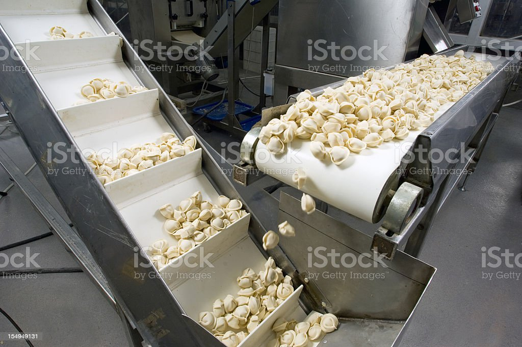 Production line in a food factory. Ravioli preparation. stock photo