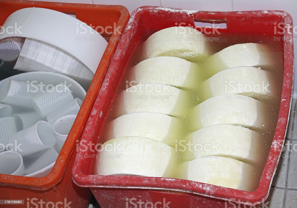 production of cheese and fresh caciotta within the dairy stock photo