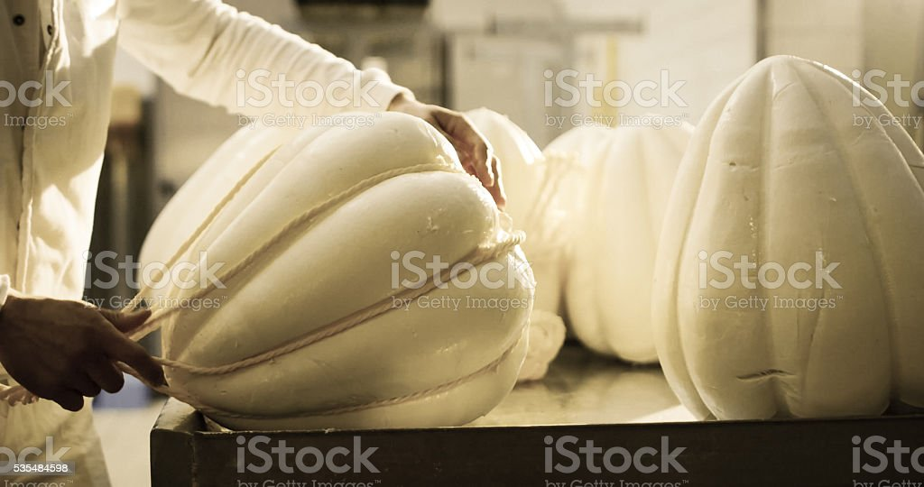Production of provolone cheese. stock photo