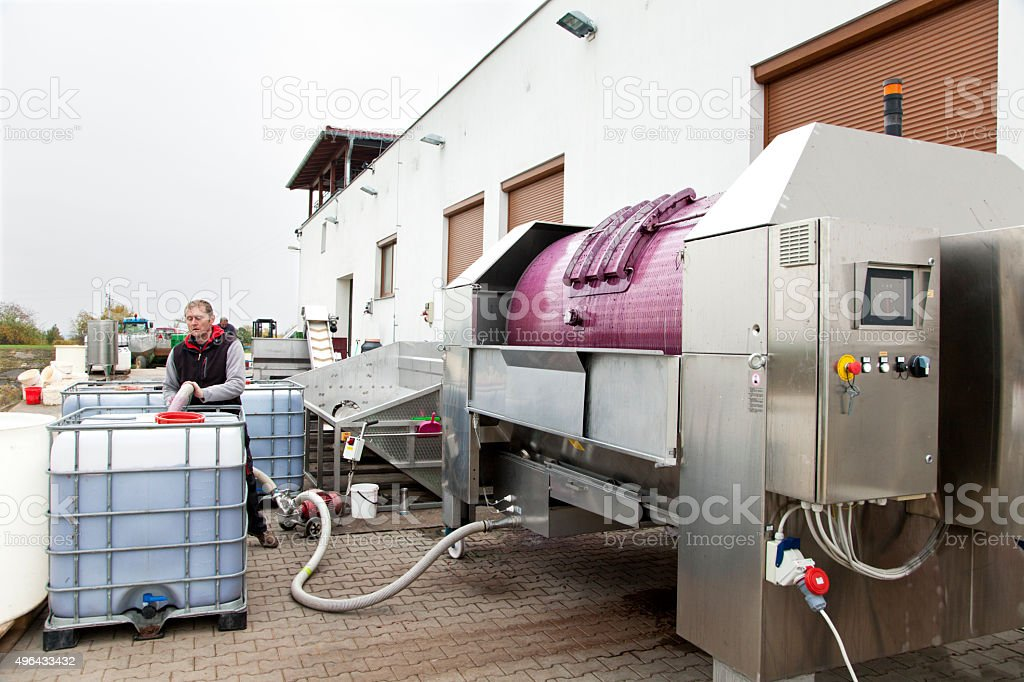 Production of red wine in winery stock photo