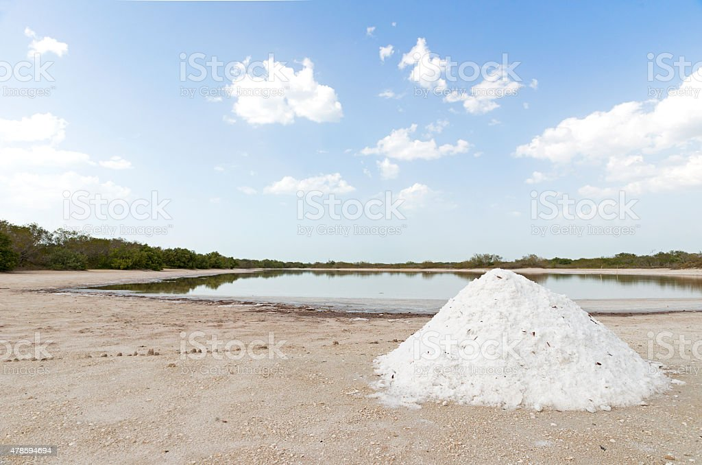 Production of sea salt stock photo