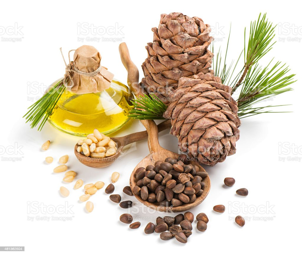 Products of siberian cedar stock photo