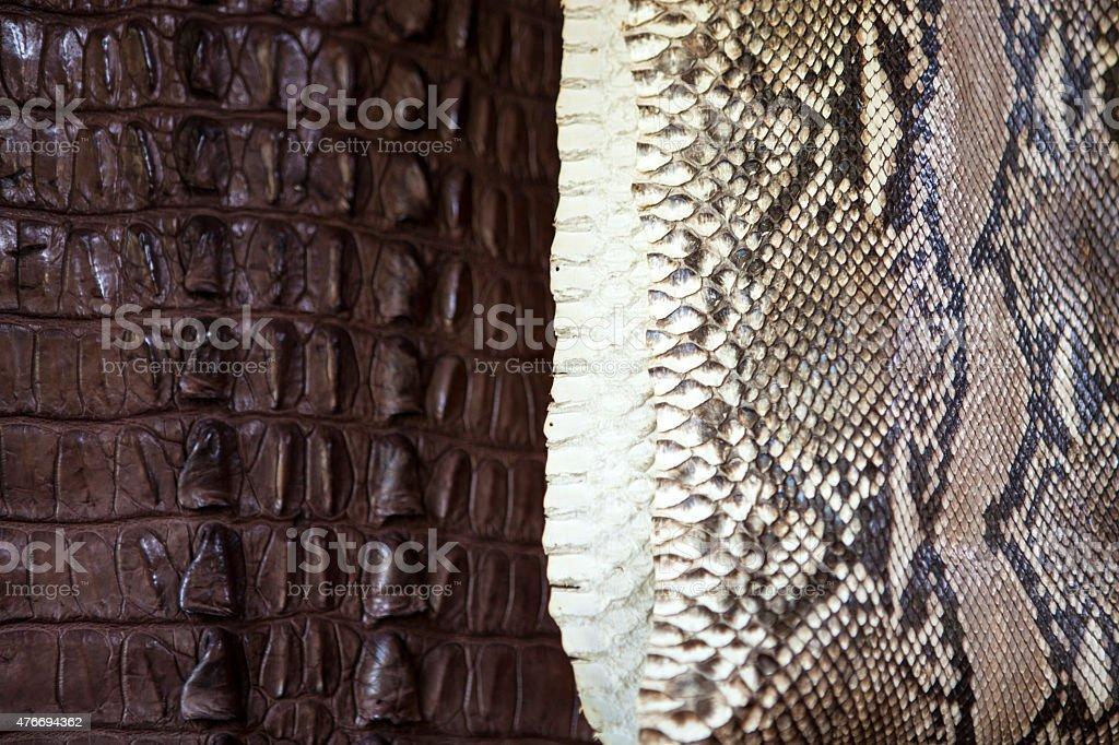Products snakeskin and crocodile skin stock photo