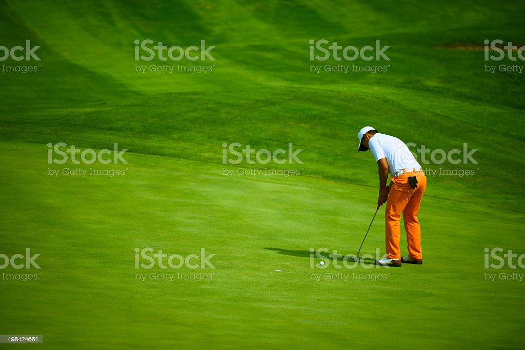 Professional Golf Putting stock photo