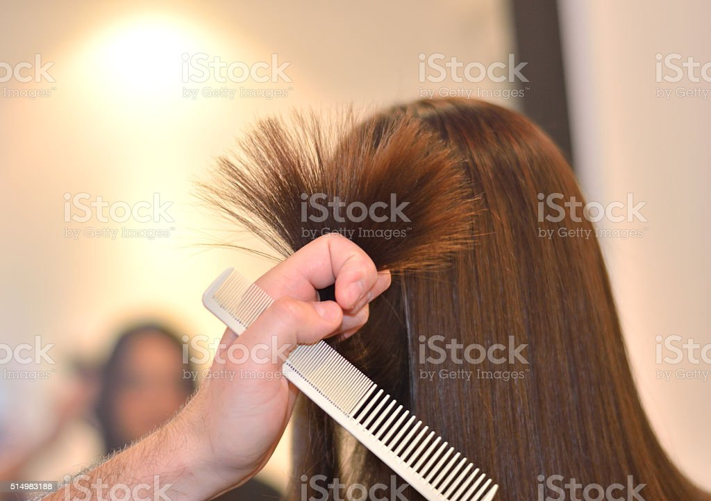 Professional Hairdresser in Hair Salon stock photo