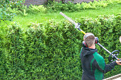Professional hedges cutting