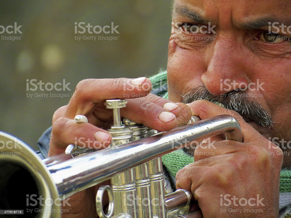 Professional Musician royalty-free stock photo