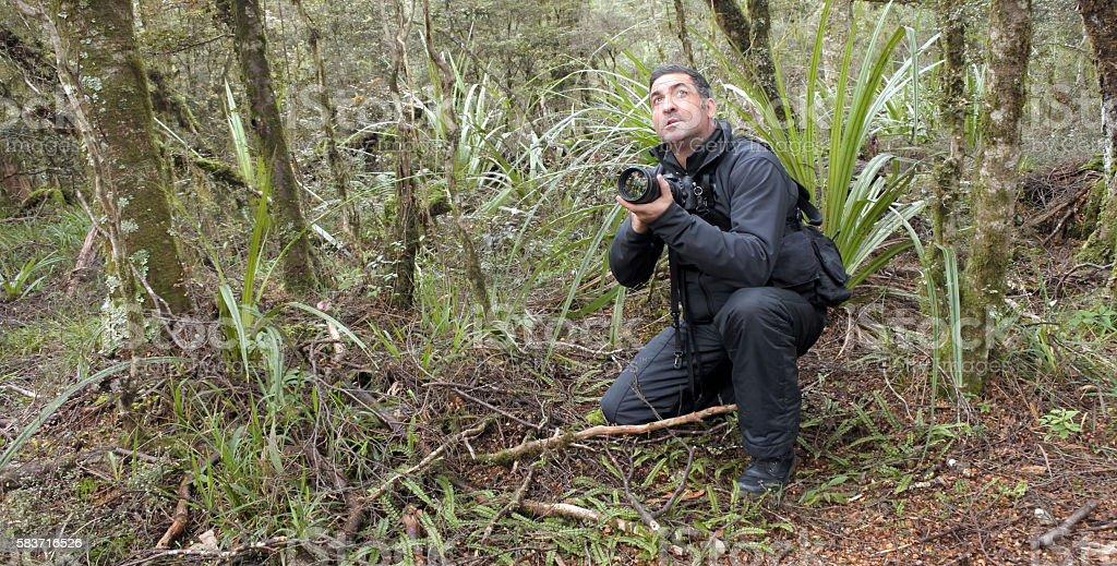 Professional nature, wildlife and travel photographer stock photo