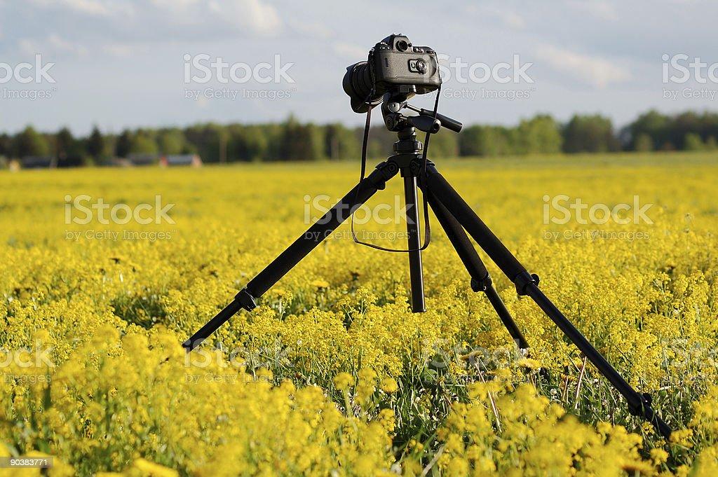 professional photo camera royalty-free stock photo