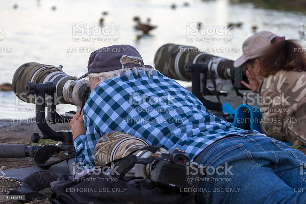 Professional Photographers Shooting Birds stock photo
