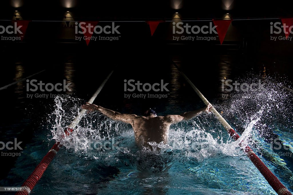 Professional swimmer- butterfly royalty-free stock photo