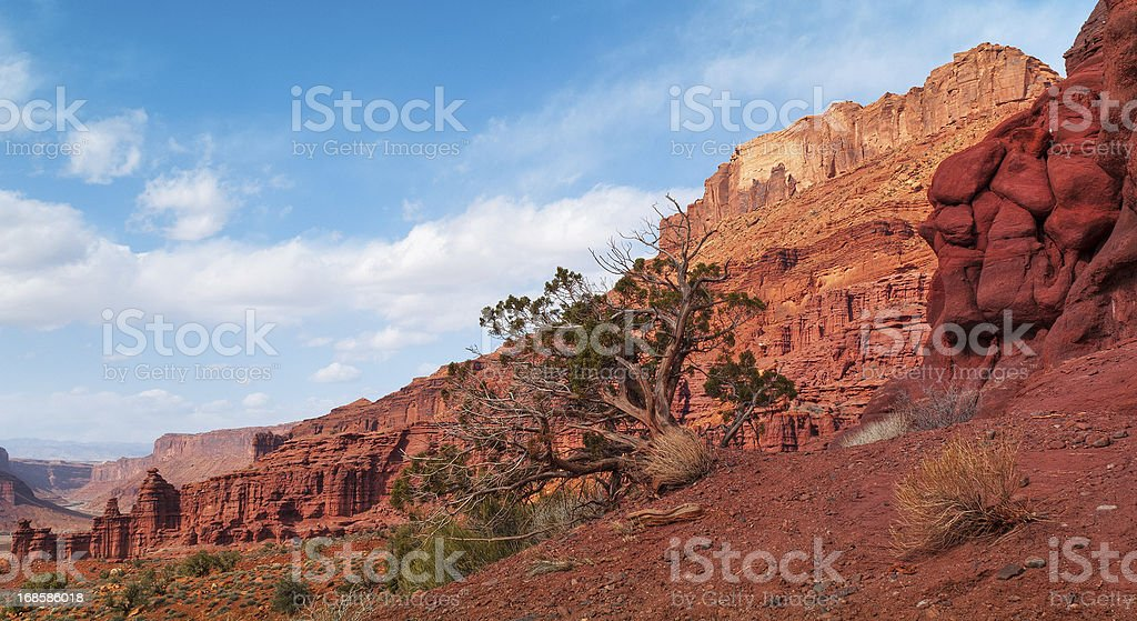 Professor Valley, Fisher Towers, Moab, Utah, USA royalty-free stock photo