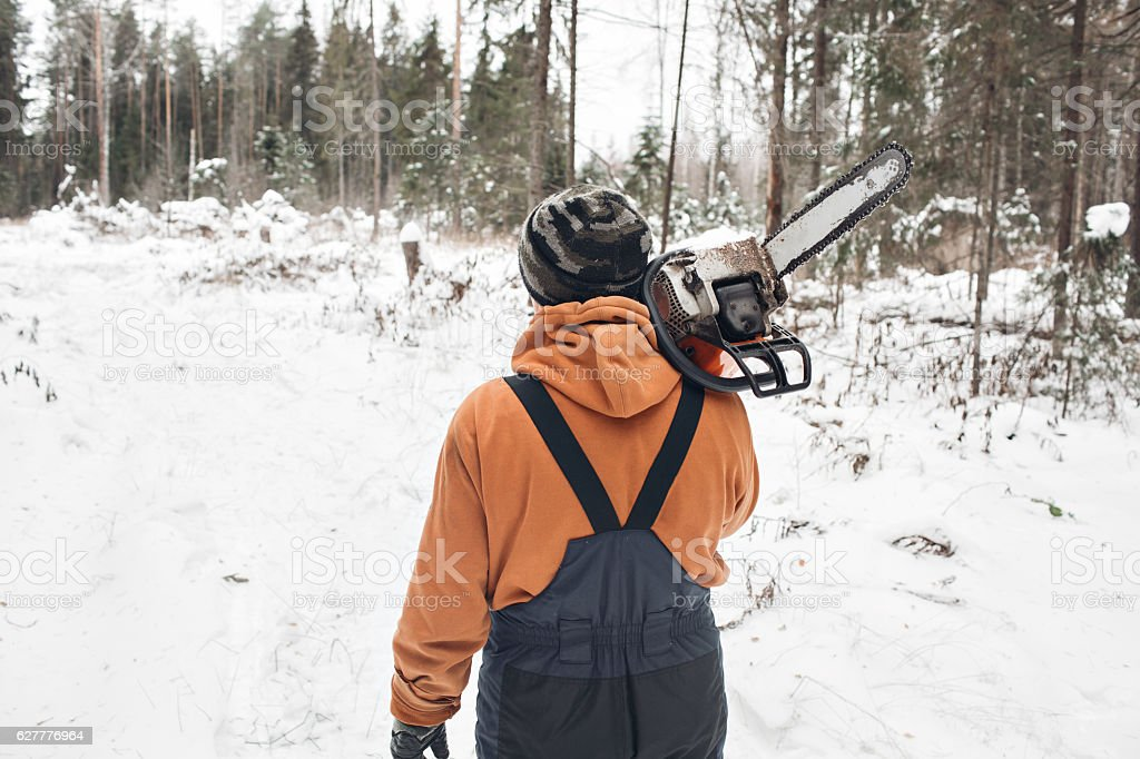 Proffesional Lumberjack hold hand saw. Winter wearing protection clothes using stock photo
