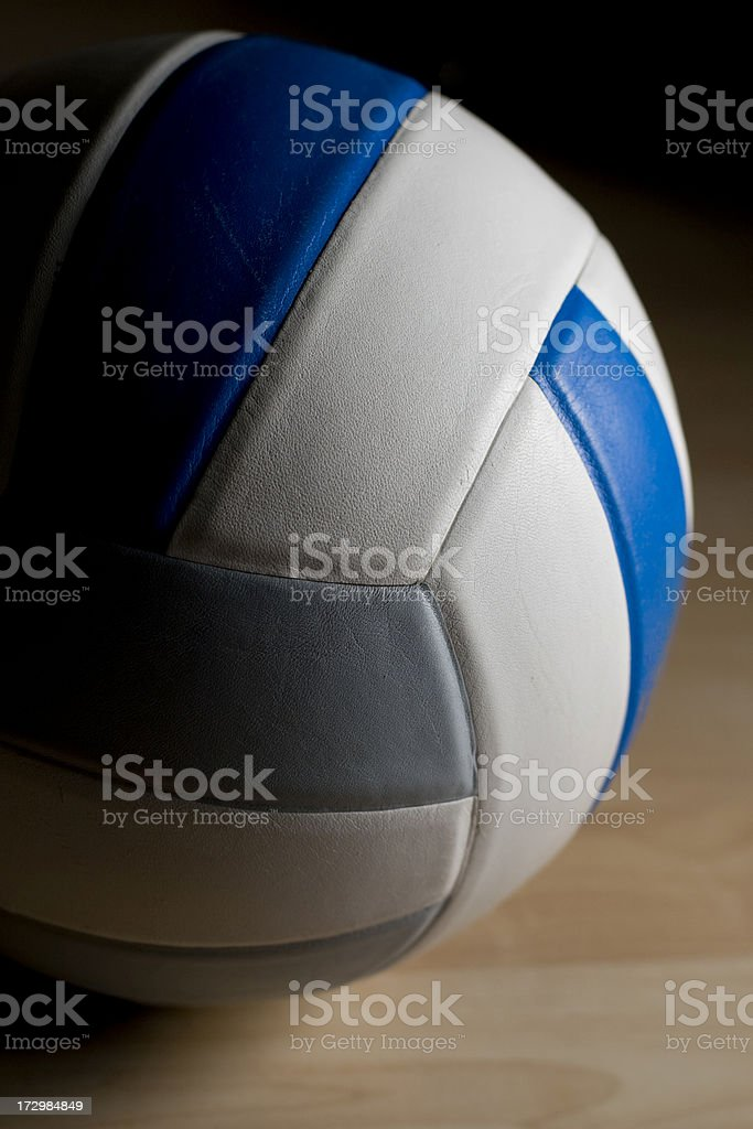 Profile of a volleyball royalty-free stock photo