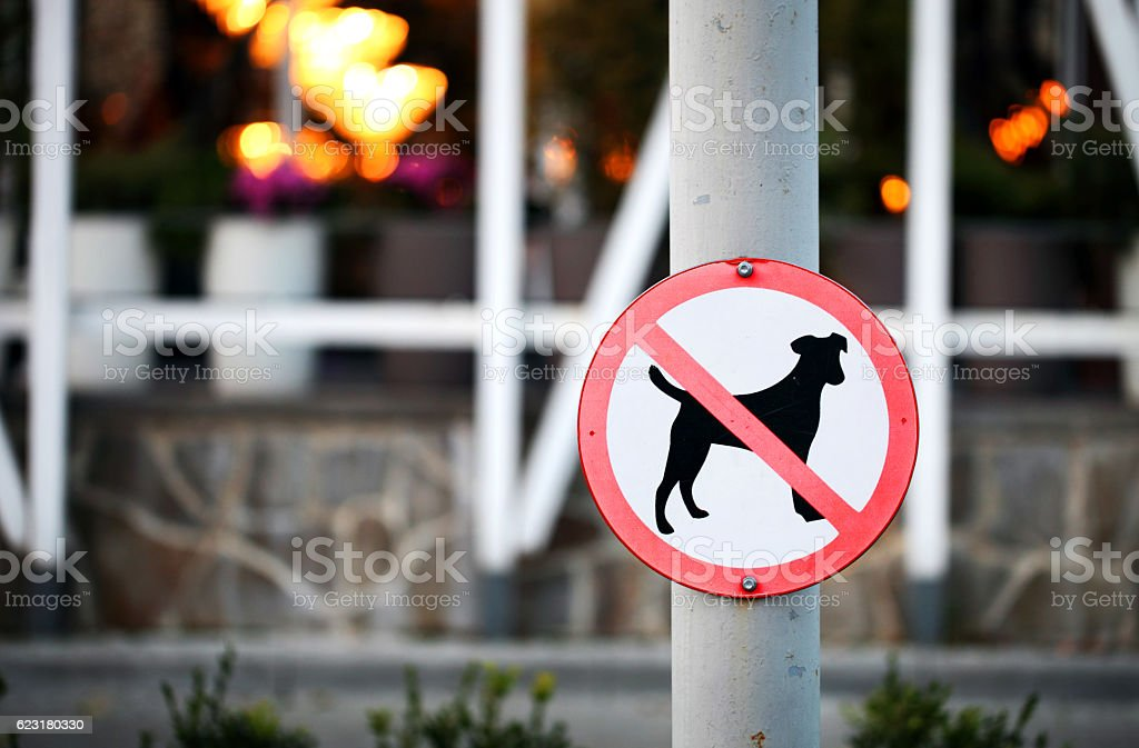 Prohibiting Dog sign stock photo