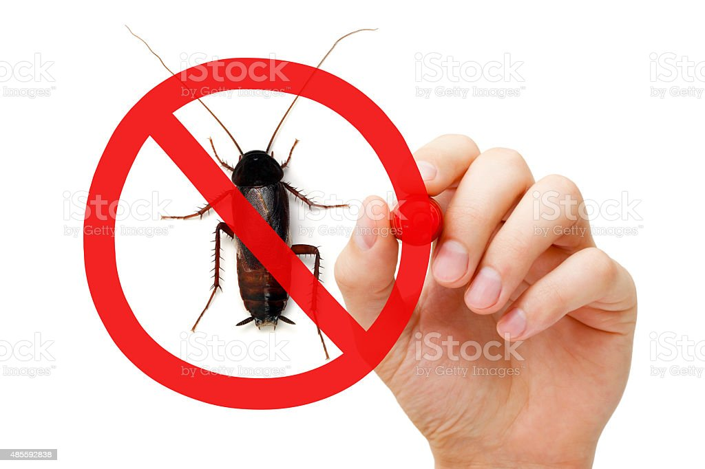 Prohibition Sign Cockroach stock photo