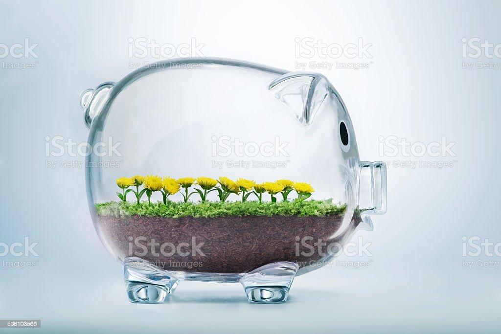 Prosperity concept stock photo