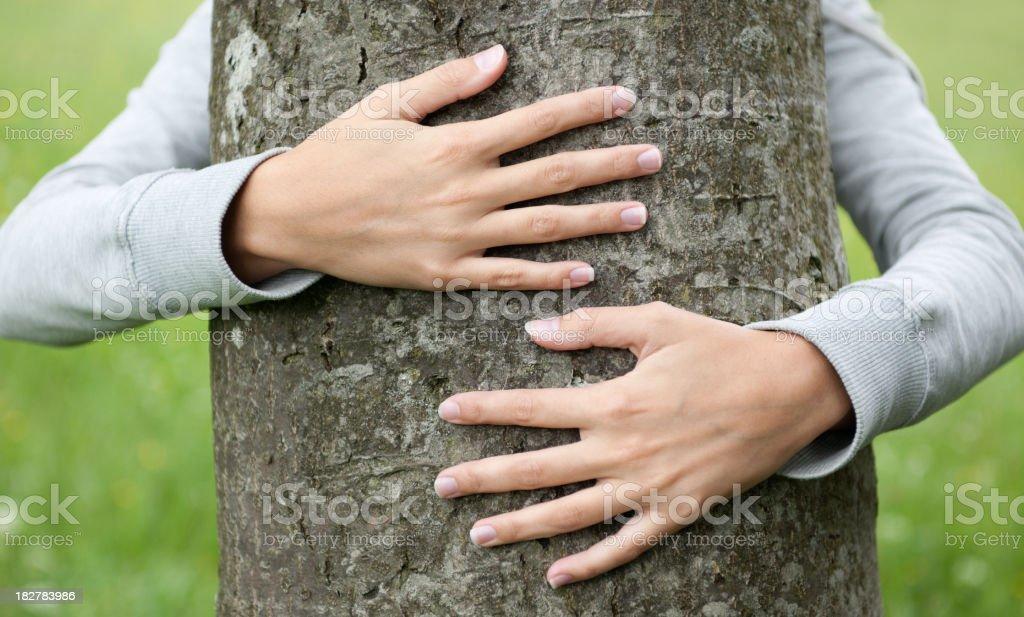 Protect Nature (XXXL) stock photo
