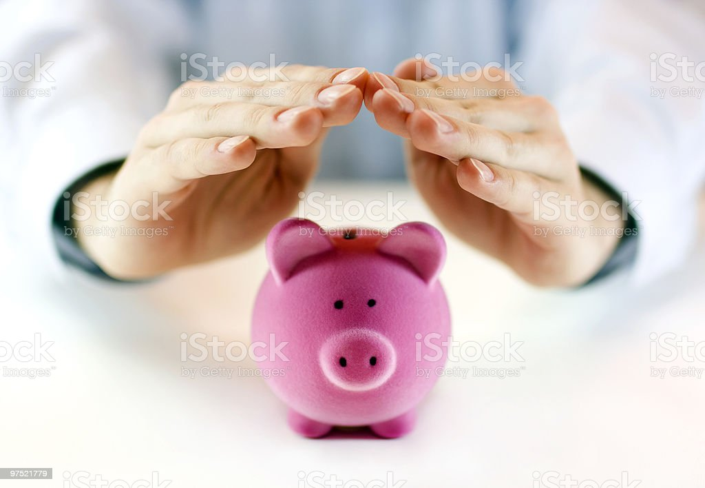 Protect your money royalty-free stock photo