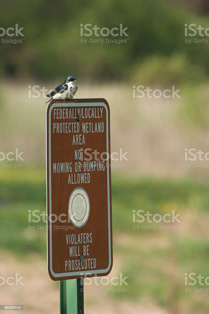 Protected Wetland sign stock photo