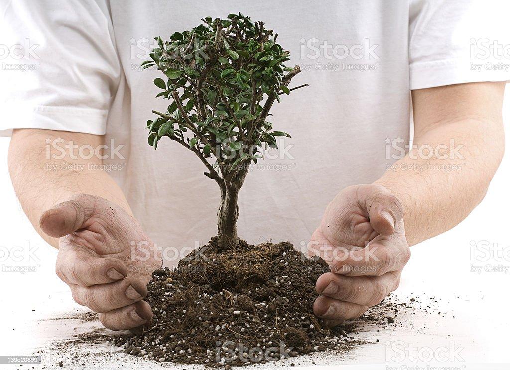 Protecting Environment. royalty-free stock photo