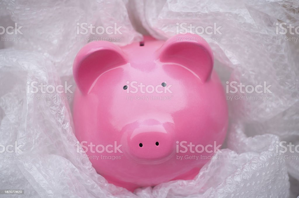 Protecting your money royalty-free stock photo