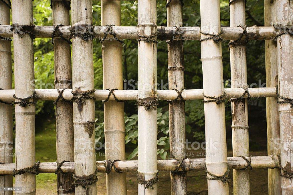 protection natural bamboo royalty-free stock photo