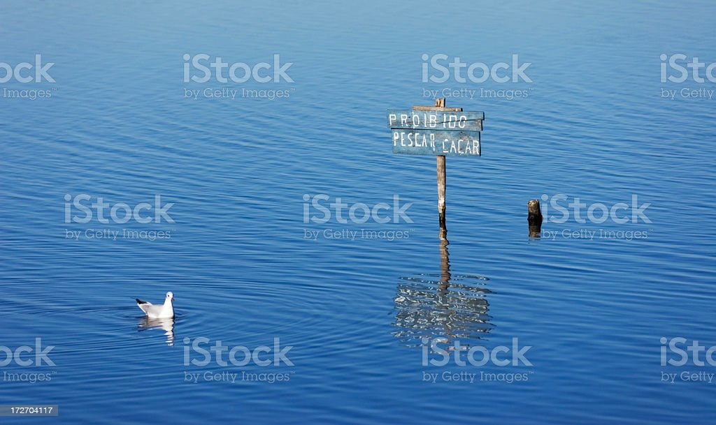 Protection sign and seagull stock photo