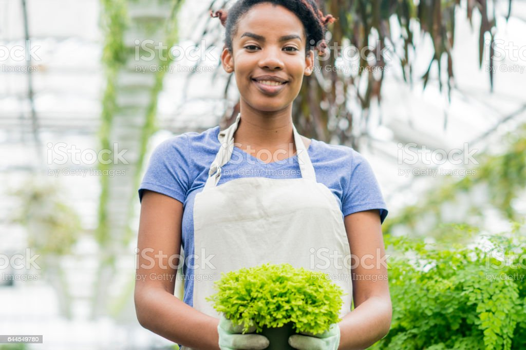 Proud Greenhouse Worker stock photo