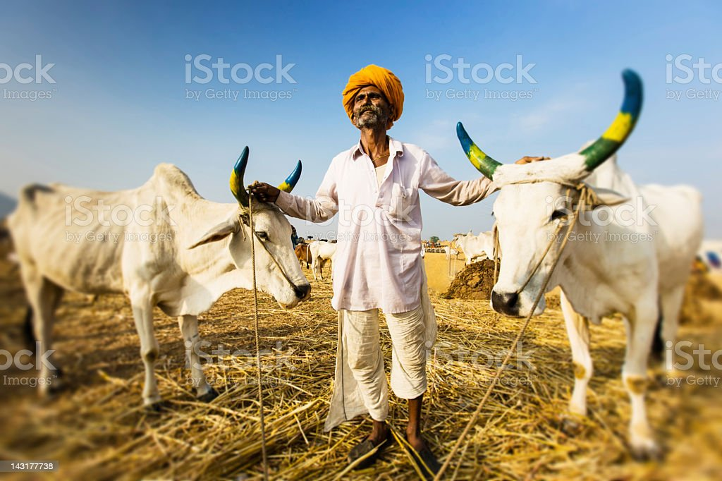 Proud Indian Farmer Portrait stock photo