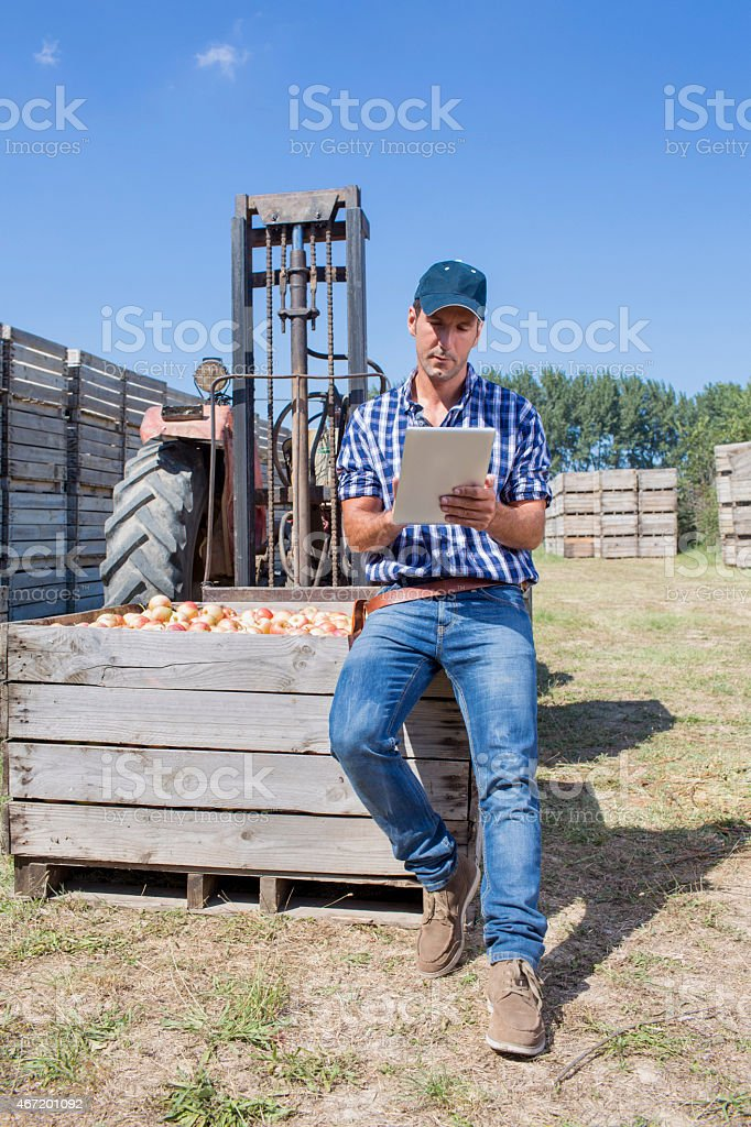 Proud of the apples stock photo
