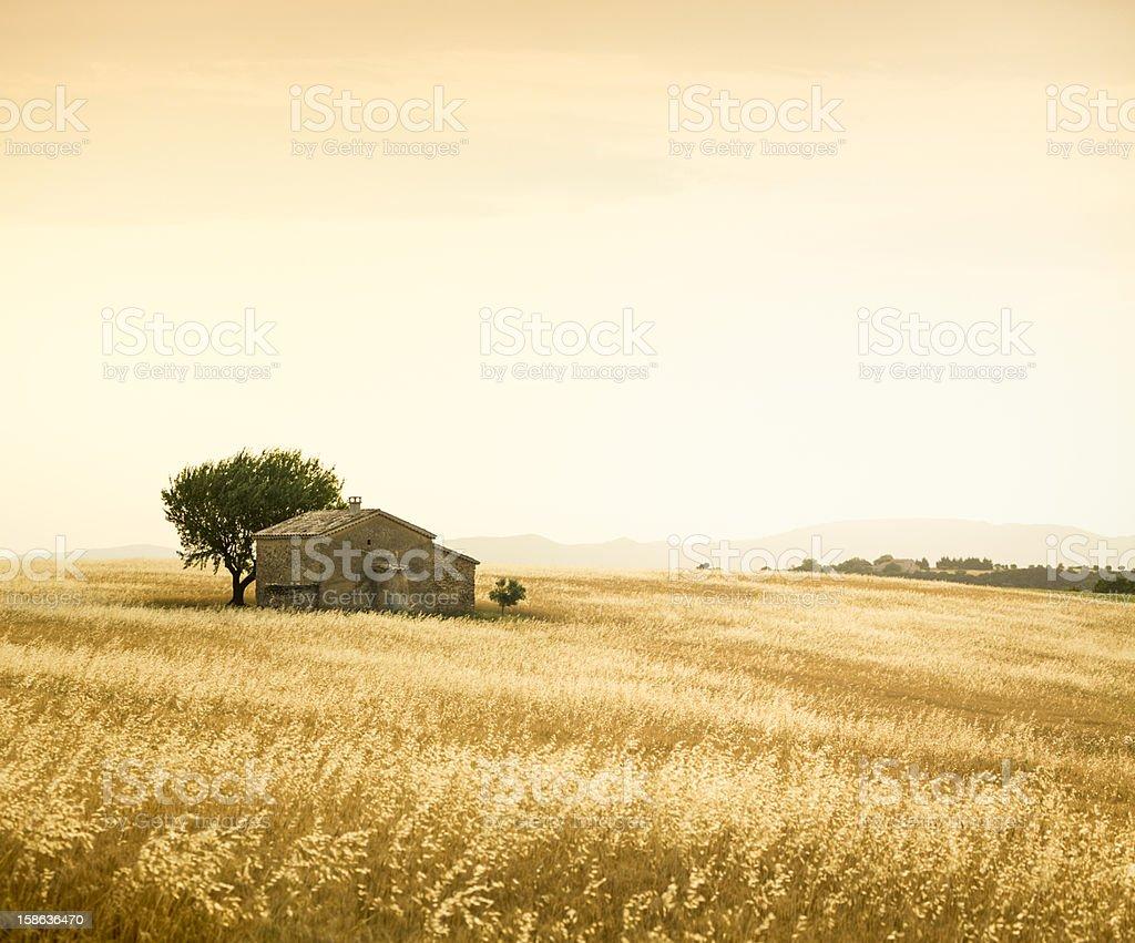 Provencal farm royalty-free stock photo