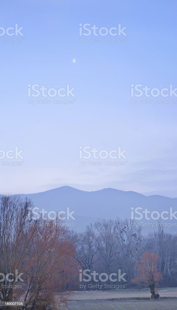 Provencal landscape with moon stock photo