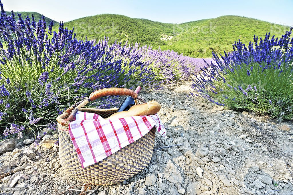 Provence lavender and picnic stock photo