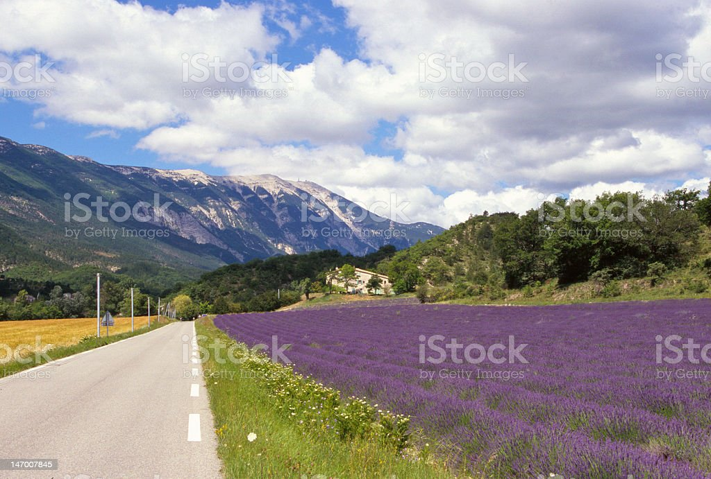 Provence Mont Ventoux stock photo