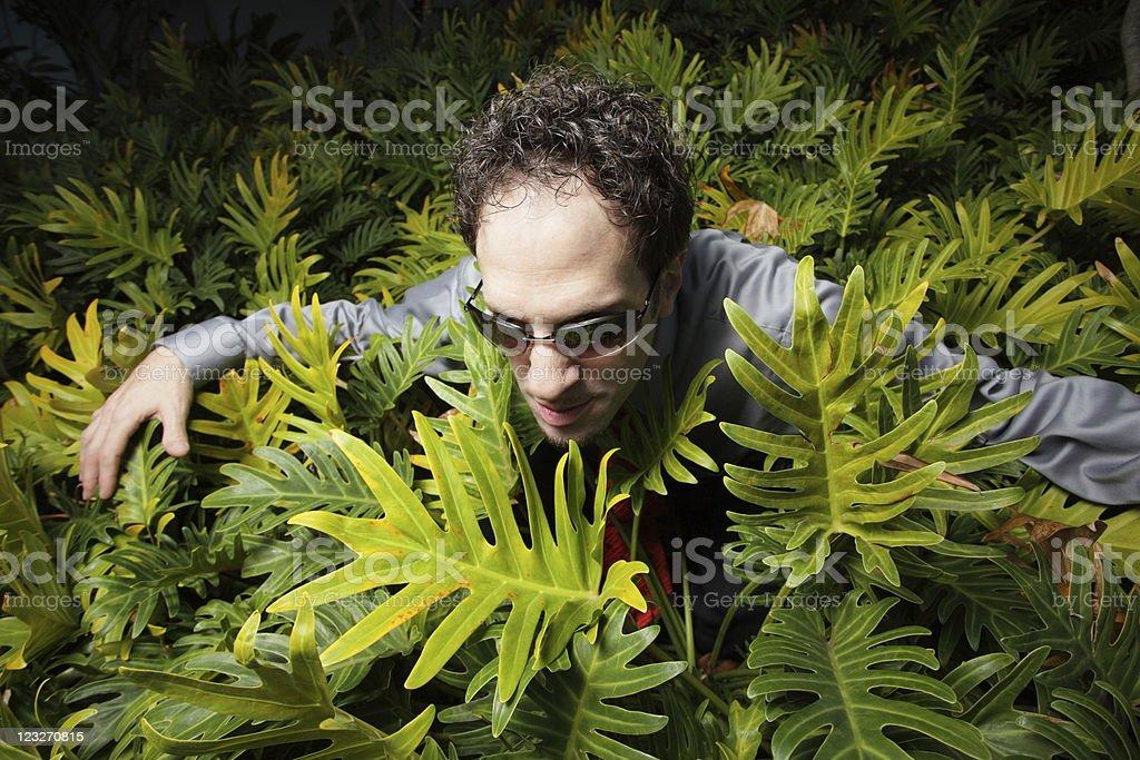 Prowling businessman stock photo