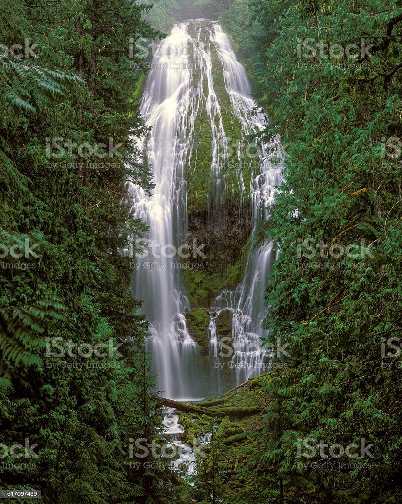 Proxy Falls 2 stock photo
