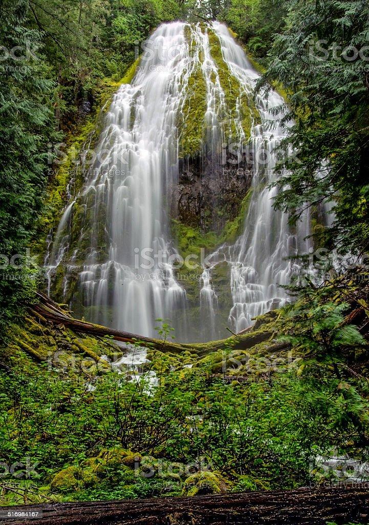 Proxy Falls stock photo