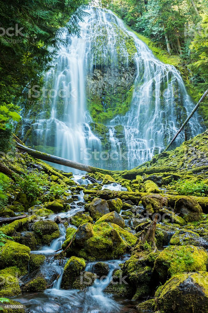 Proxy Falls, Willamette National Forest, Central Oregon (vert) stock photo