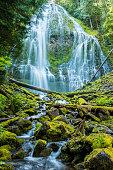 Proxy Falls, Willamette National Forest, Central Oregon (vert)