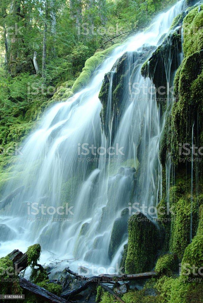 Proxy Falls,Oregon USA stock photo