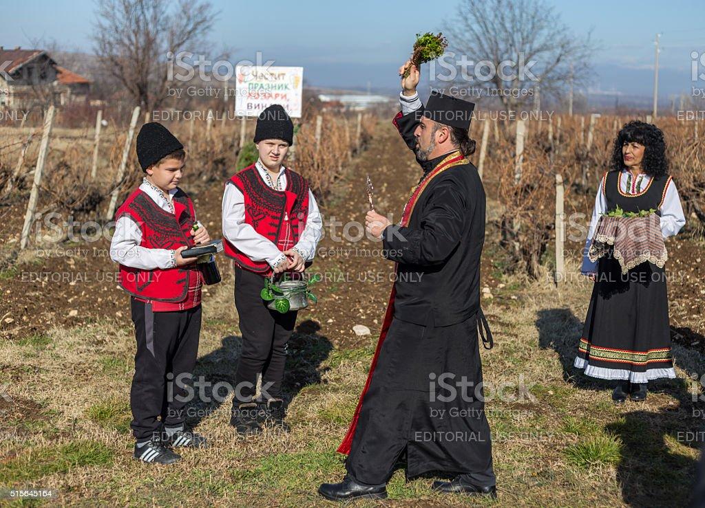 Pruning of the vineyards ritual in Bulgaria stock photo