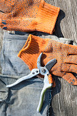 Pruning shears and protective gloves
