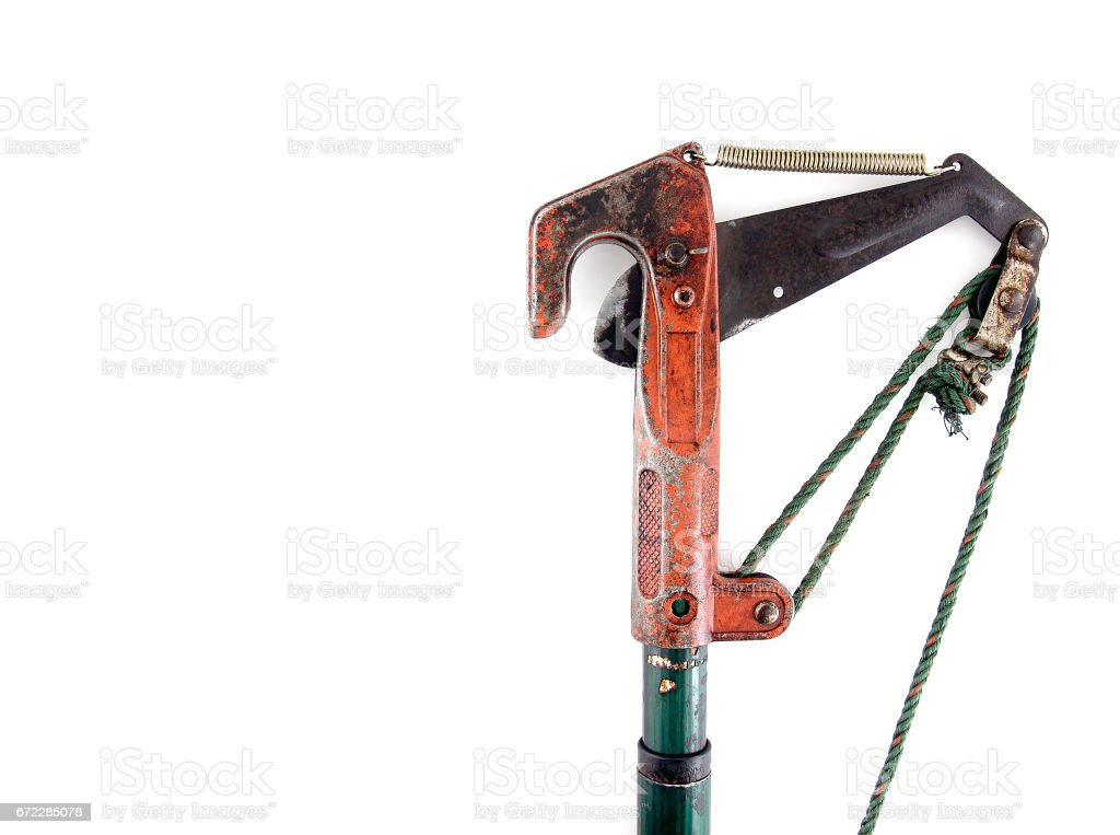 pruning shears (shears cut branches) isolated on white background stock photo