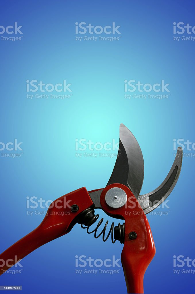 Pruning Sheers (the blue tools series) stock photo