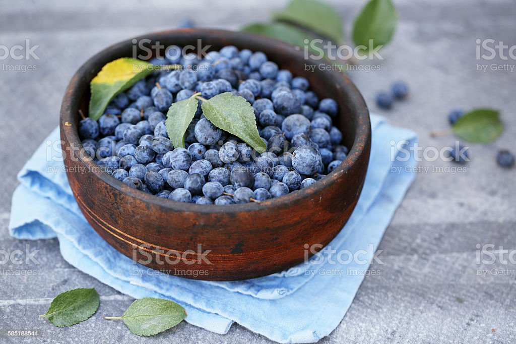 Prunus spinosa in a wooden bowl stock photo
