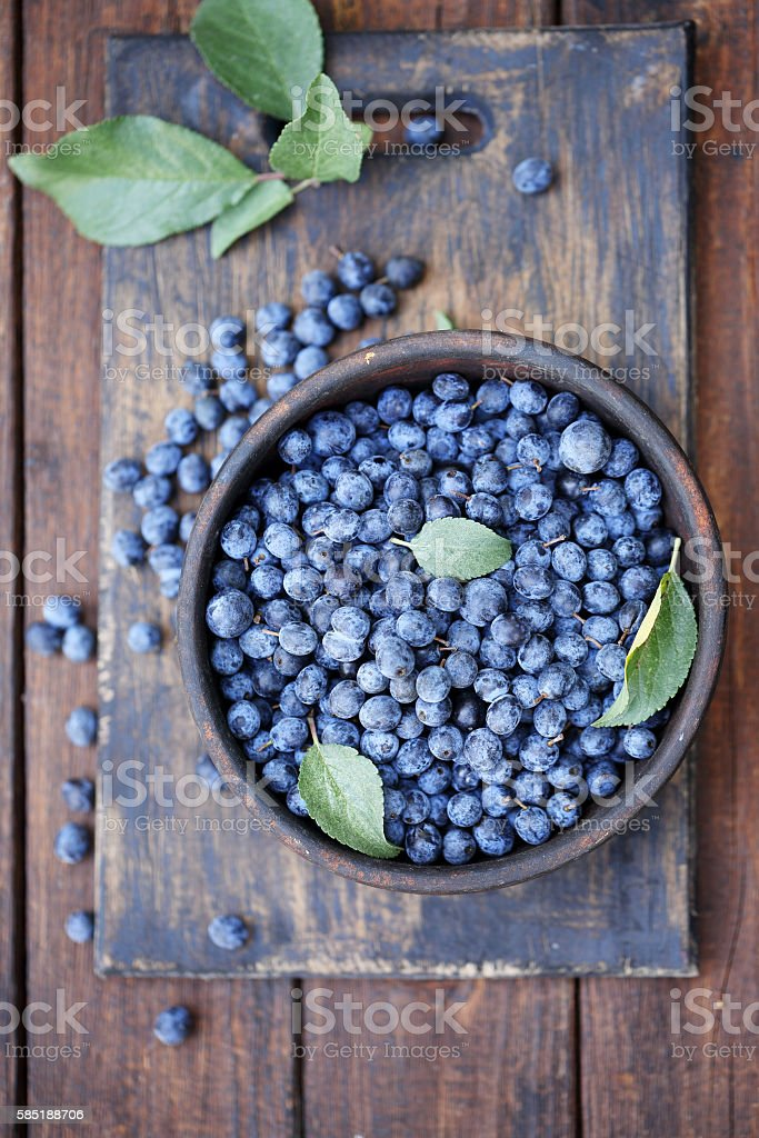 Prunus spinosa on a board, top view stock photo